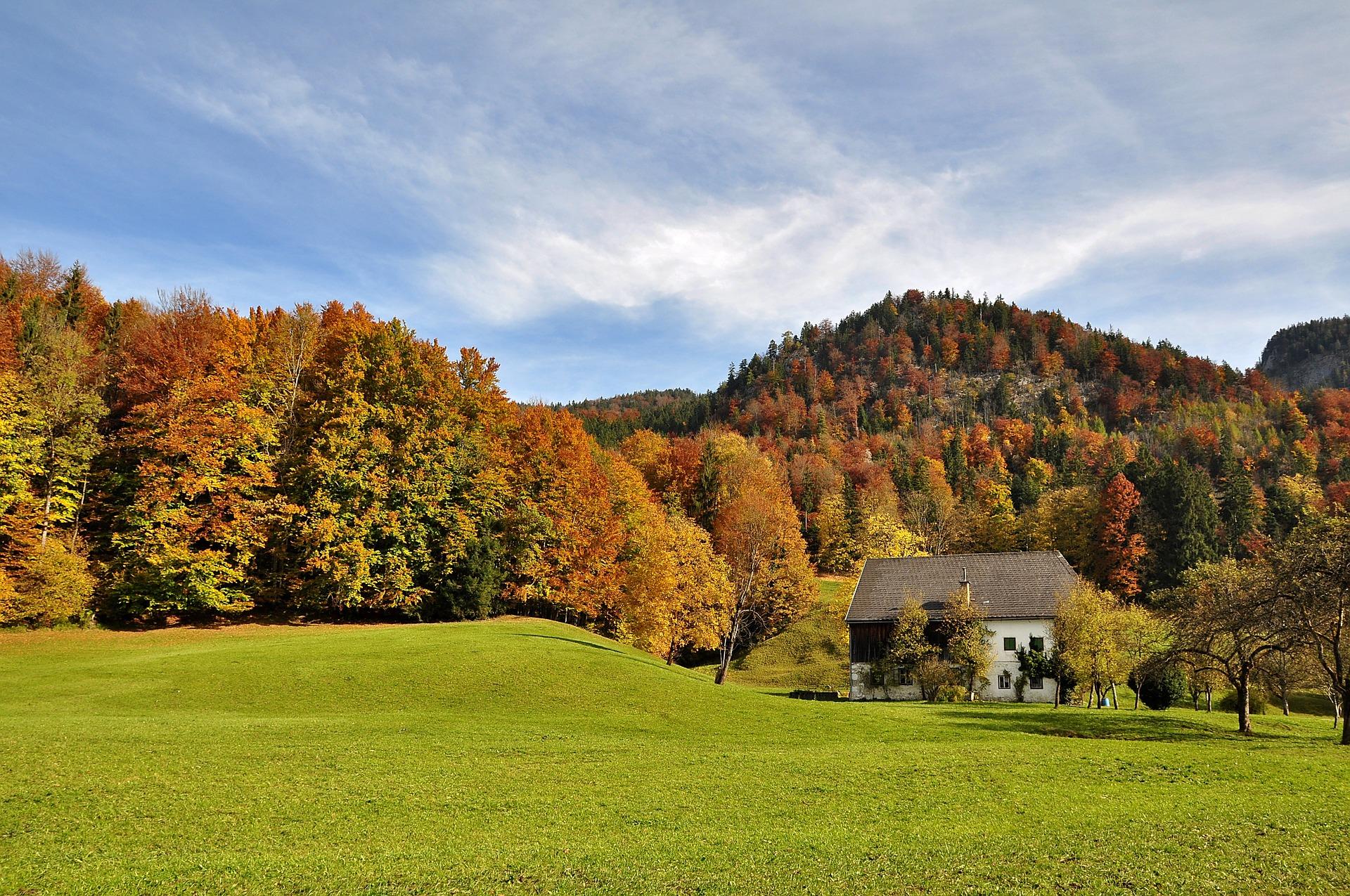 autumn-2888510_1920